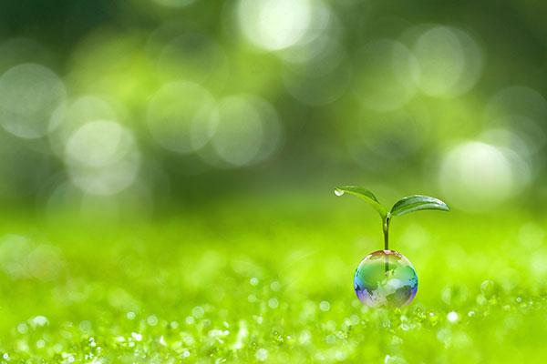 オゾンのメリット③ 環境負荷の低さ