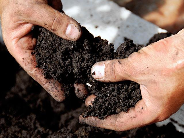 まとめ~オゾンは土もキレイにする