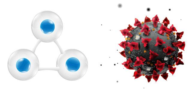 オゾンと新型コロナウイルスの関係